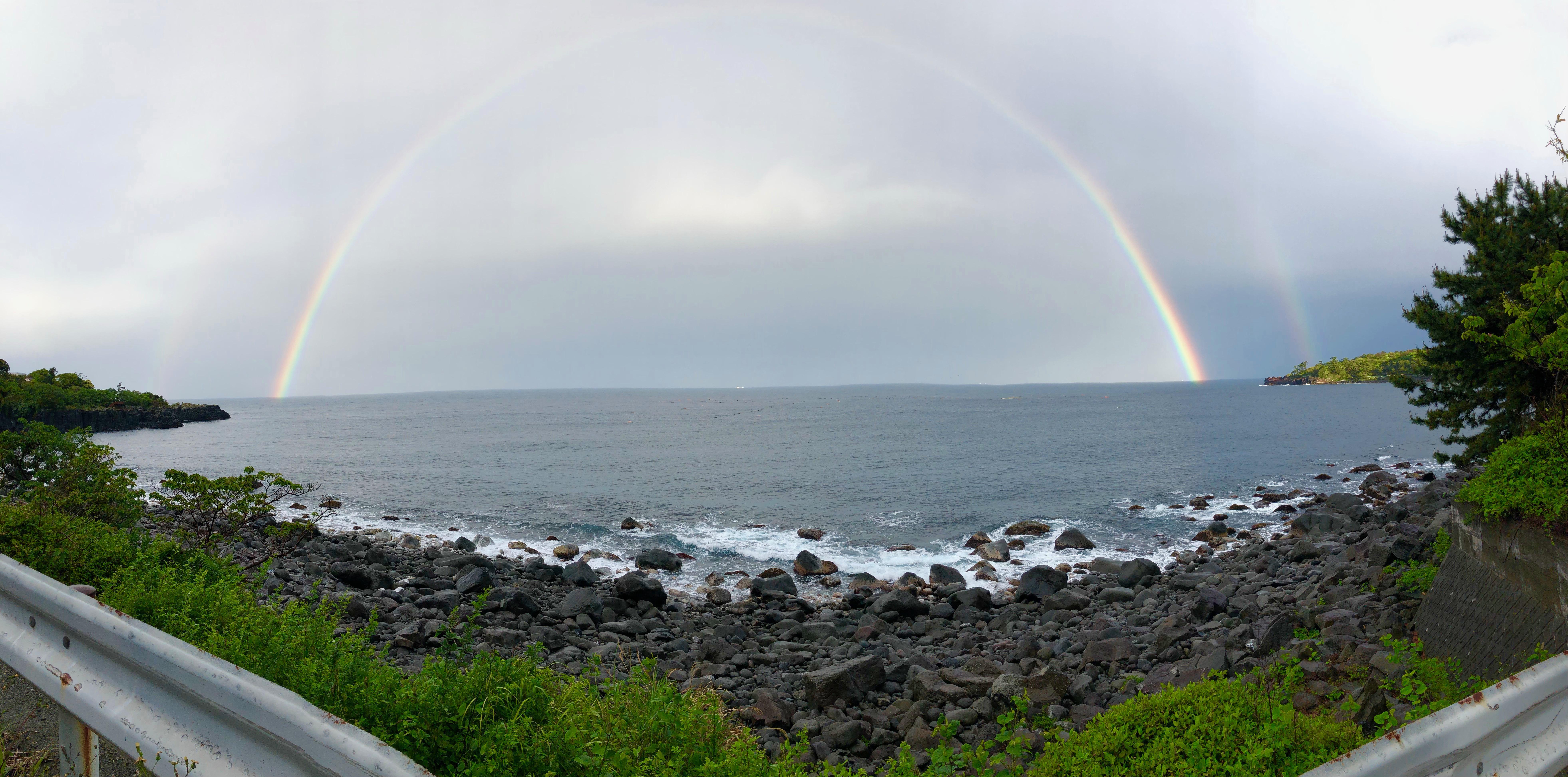 あ、お散歩中に虹がかかりました!