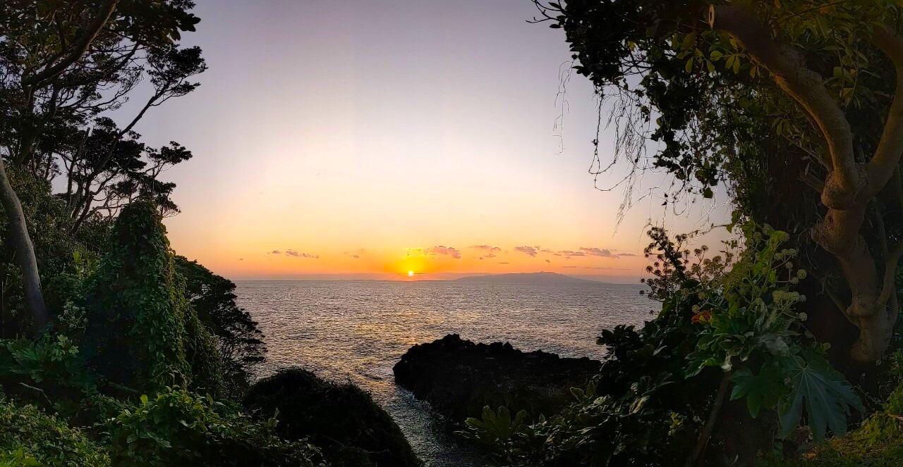 これ見て欲しいのです!!うちから歩いて30秒の岸壁の上から見た伊豆大島と朝陽。眼下には4000年溶岩海岸。