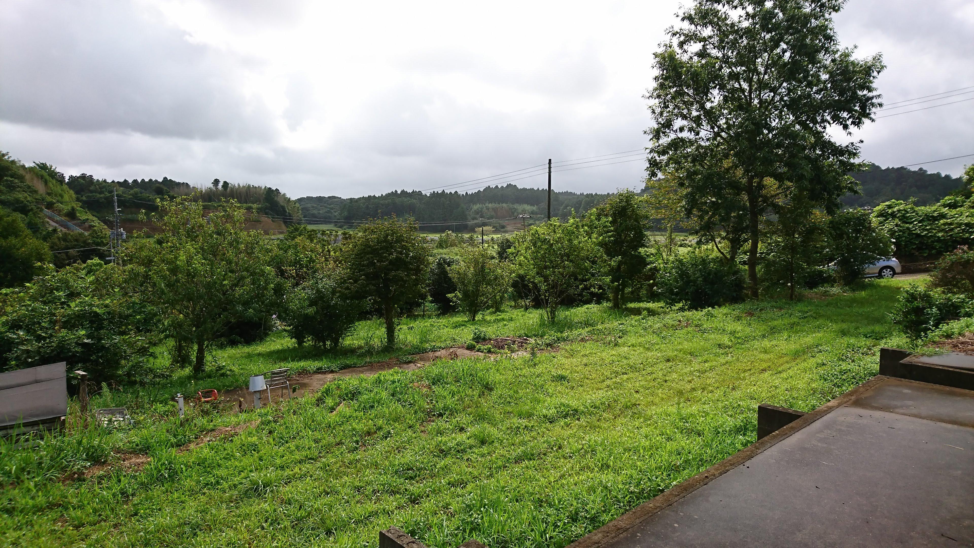 草地の部分には普通車が20台以上停められます。テントやBBQの場所は自由にお選びいただけます。