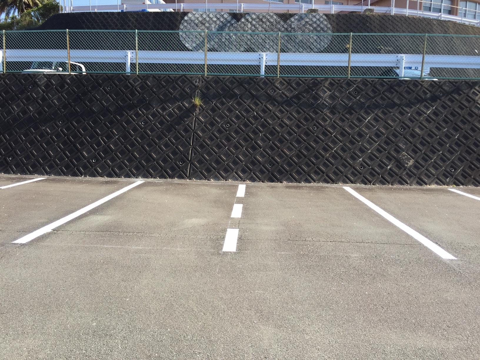 駐車可能なスペース(1台分)