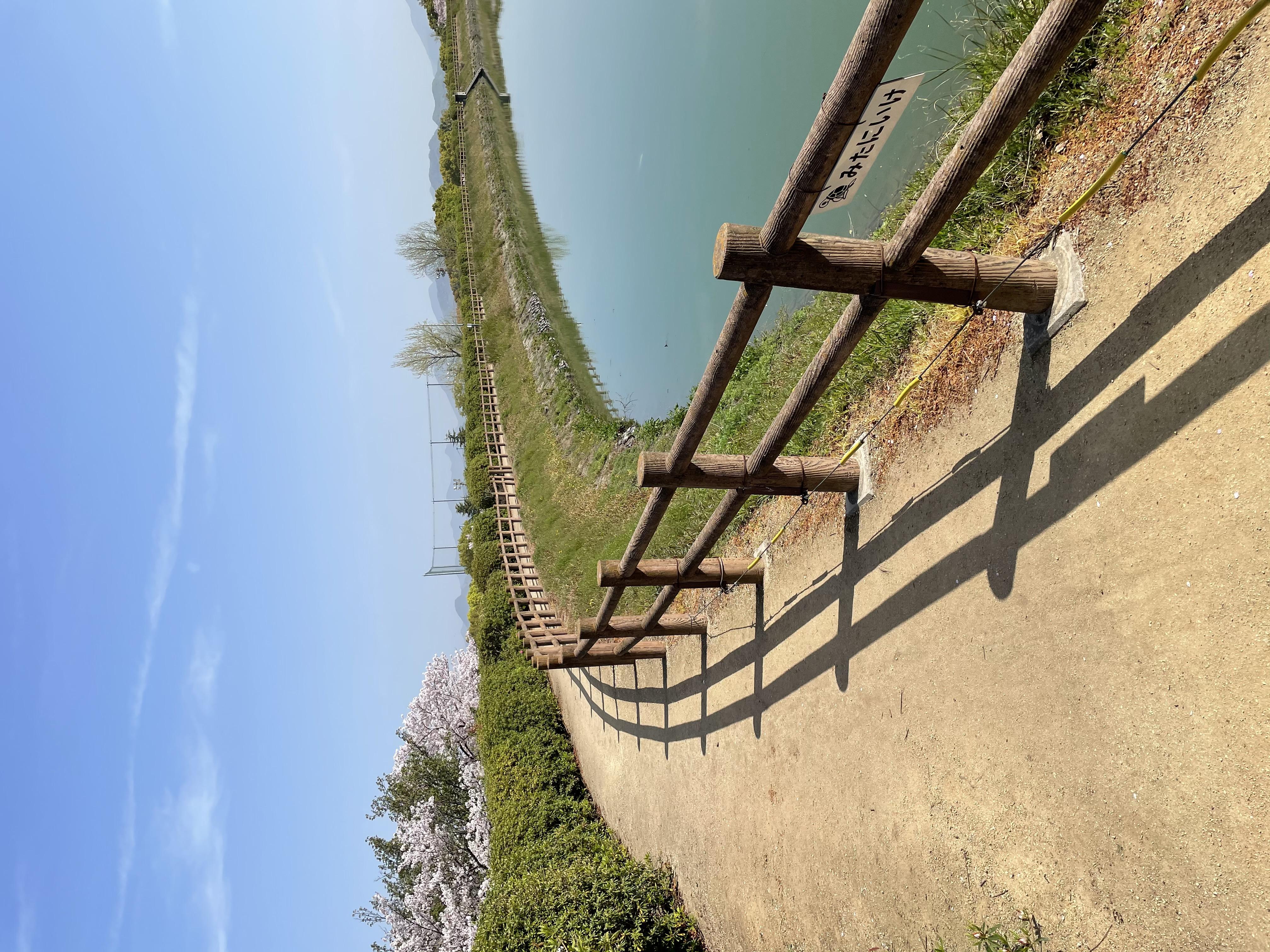 わんちゃんのお散歩にも最適!三谷池遊歩道
