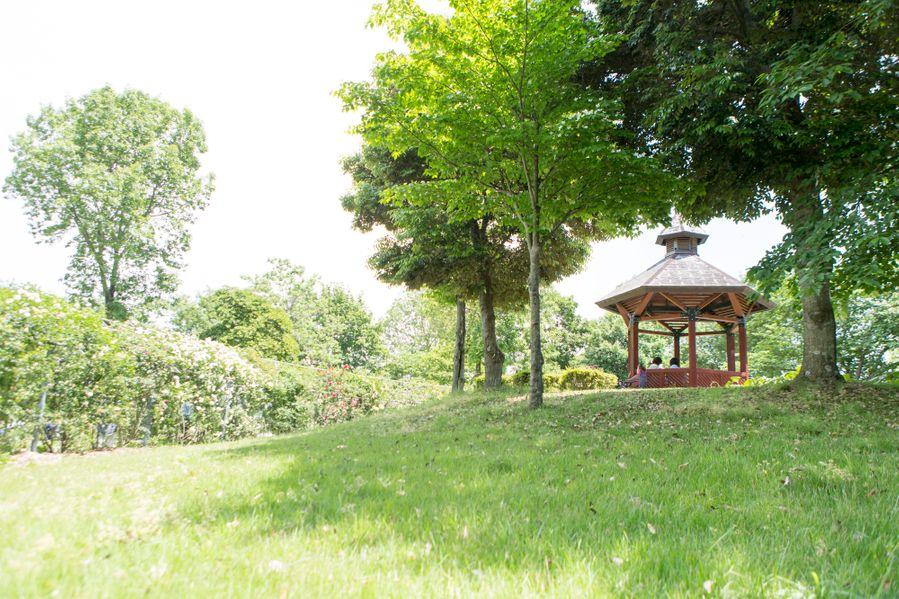 公園内でのんびり過ごせます!