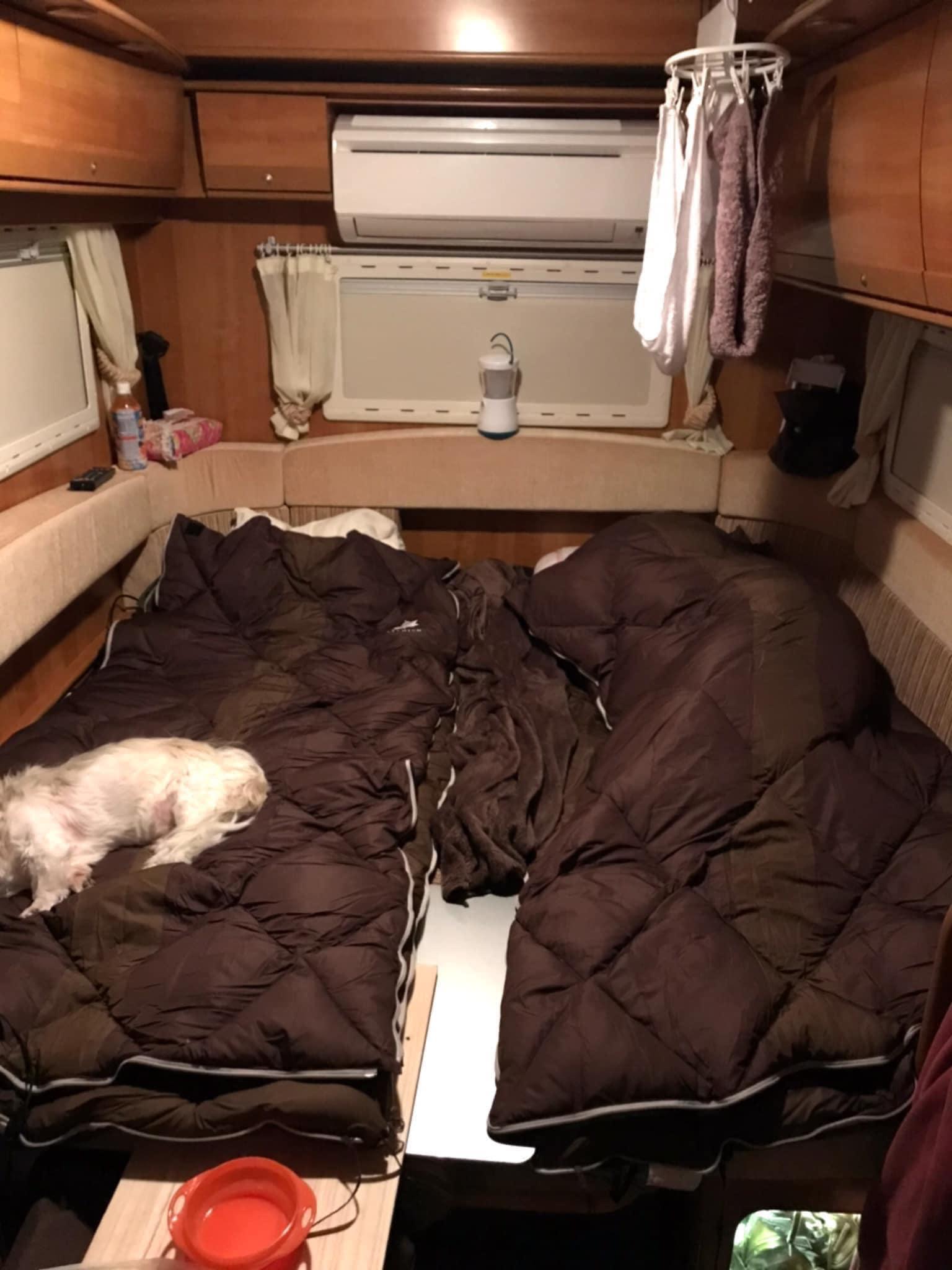 (5)就寝時(大人3名、小型犬3頭程度)