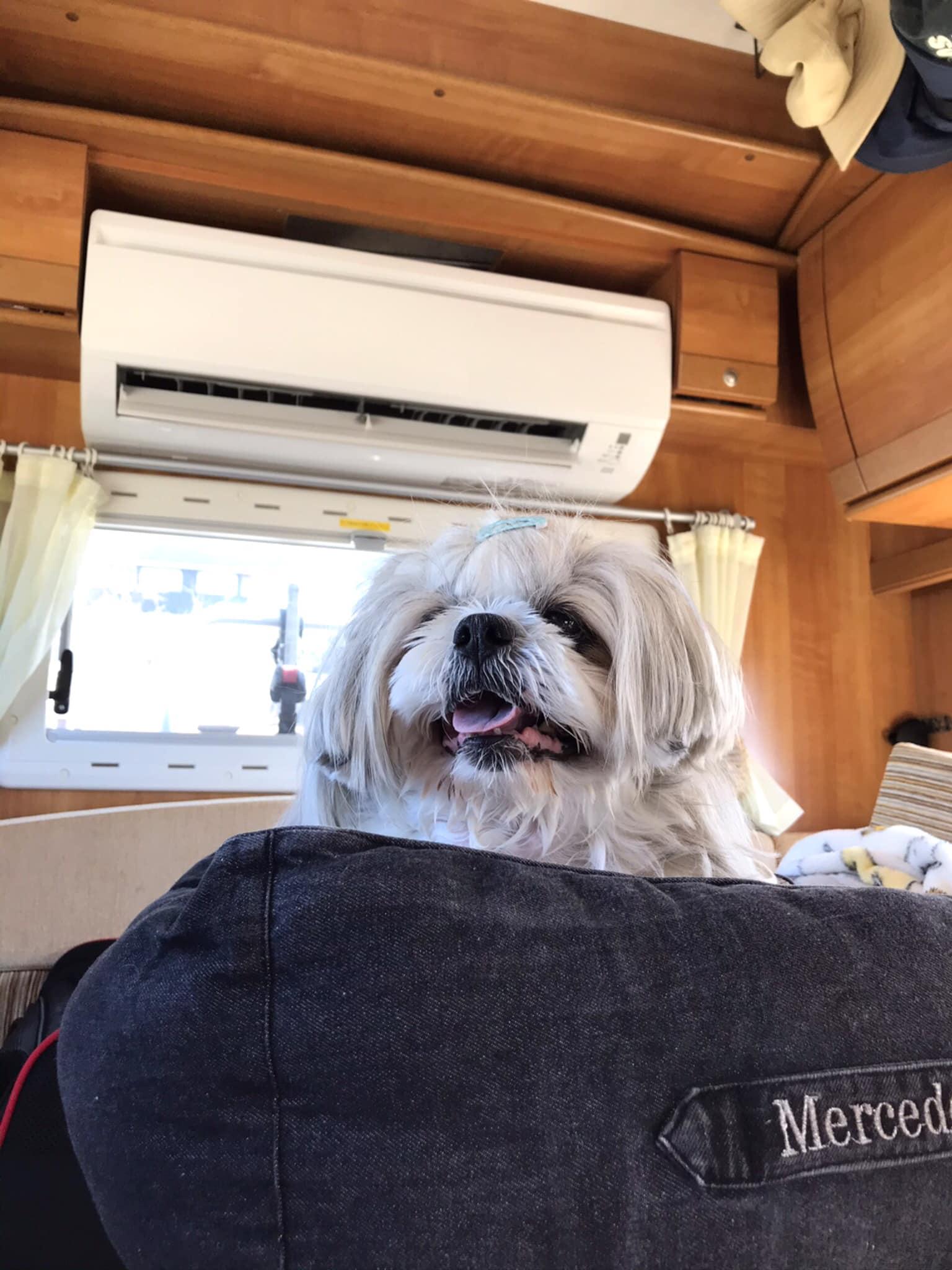 (7)家庭用エアコン設置(愛犬旅には欠かせないアイテムです)