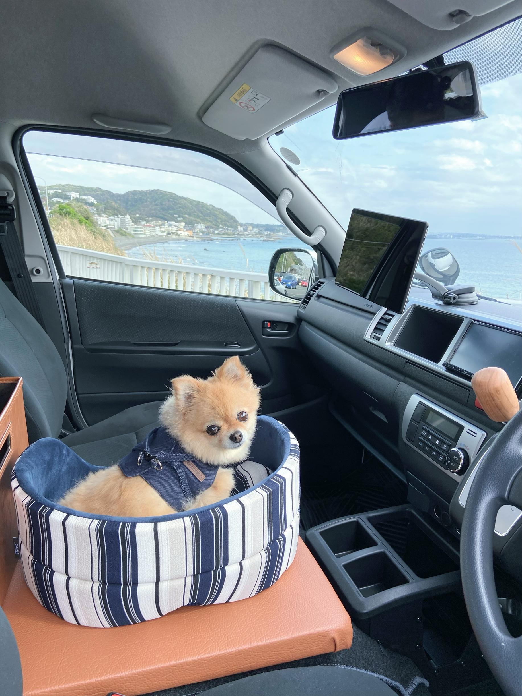 愛犬用スペースにベッド設置
