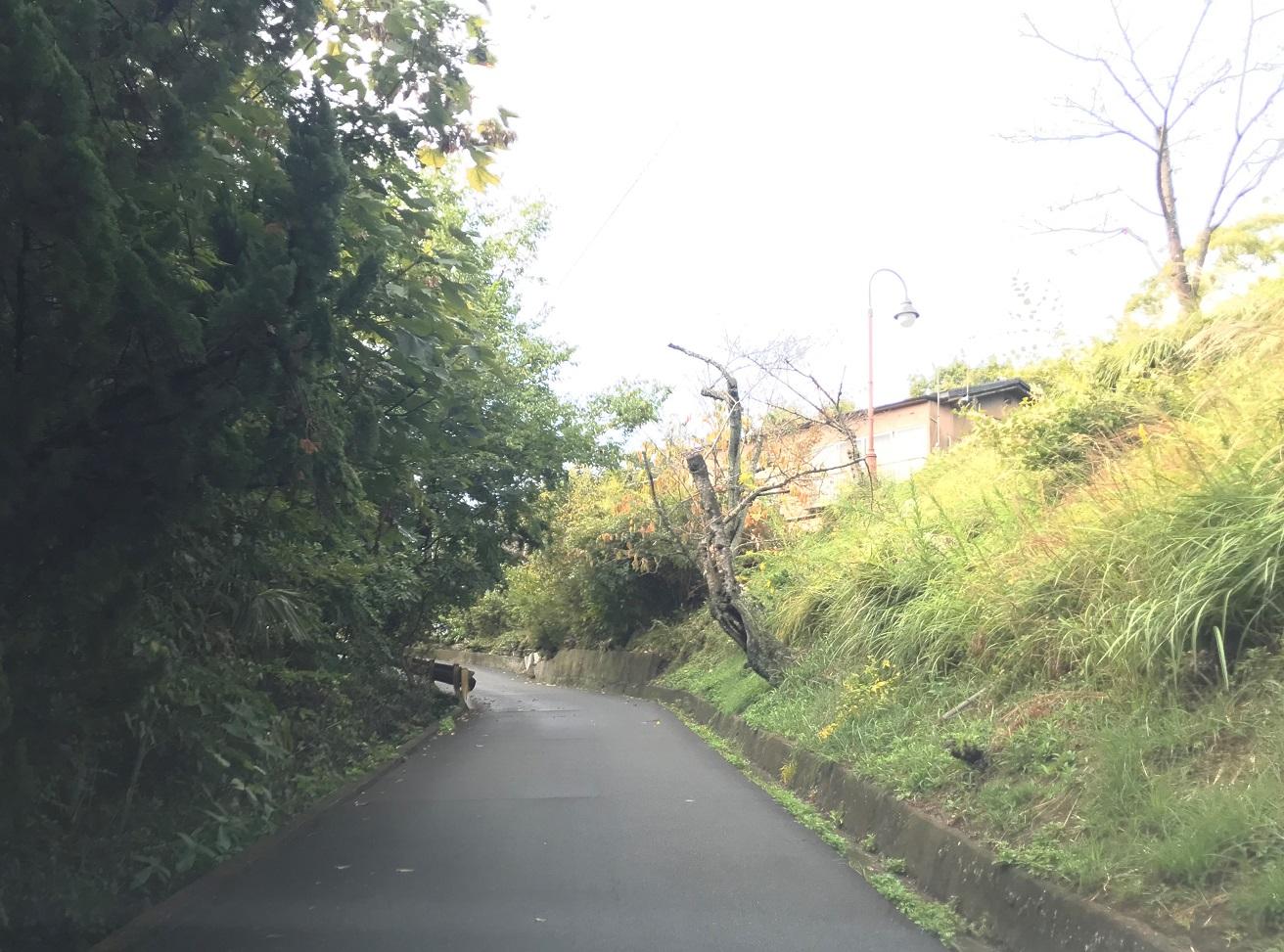 道順6 坂道を上り頂上の展望台西の右側が「千光寺天狗松駐車場」です。