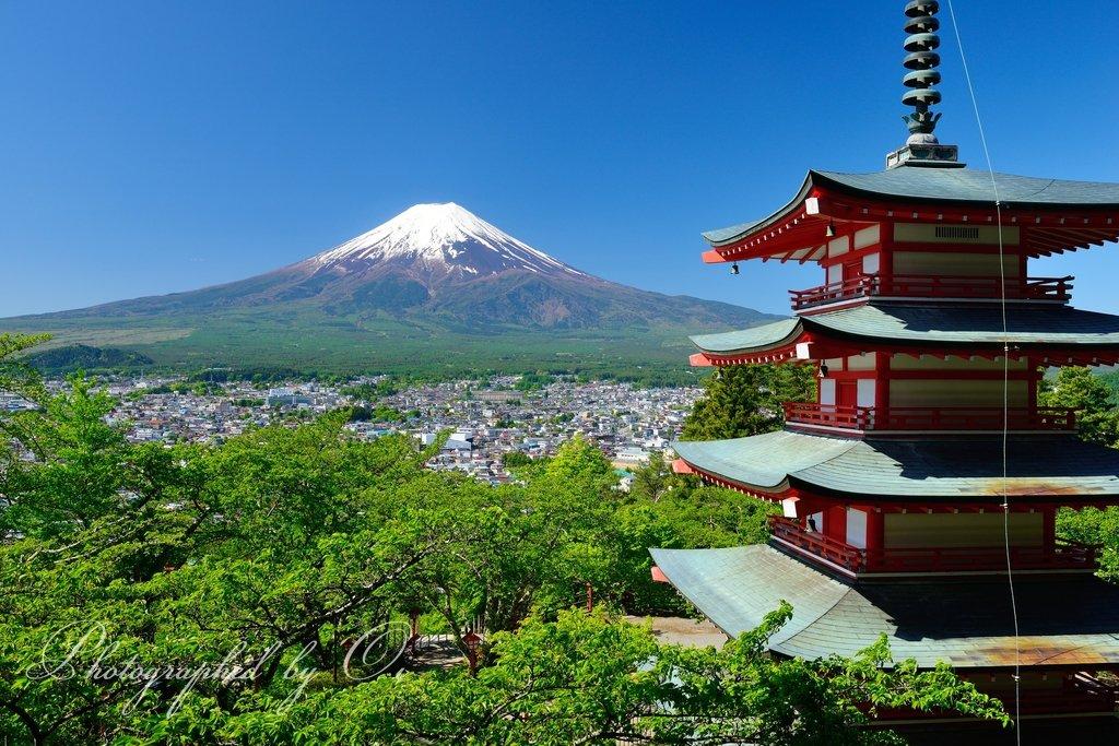 新倉山からの富士山 車中泊も最高でした