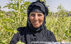 廃墟に戻り、再建支援を受けるイラク避難民の農家
