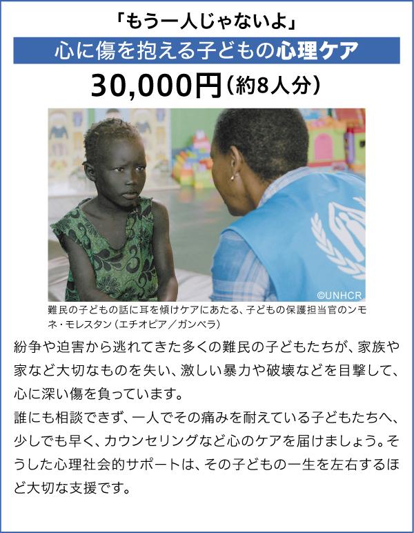 心に傷を抱える子どもの心理ケア 30,000円(約8人分)