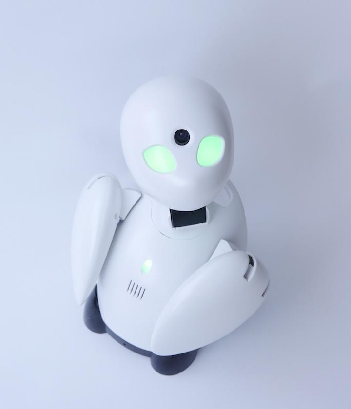 画像縮小,分身ロボット