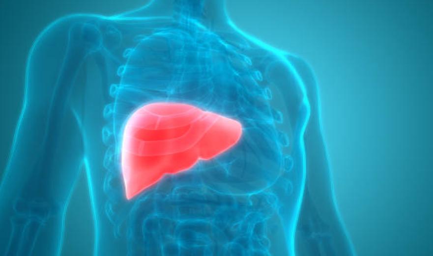 肝臓,癌,ピリチュアル,メッセージ