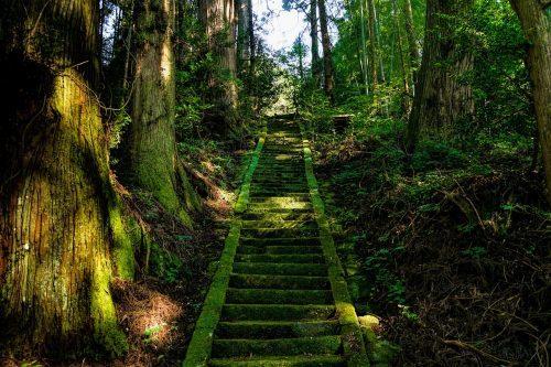 日本の神話でもハイヌウェレに似た話が伝わっている