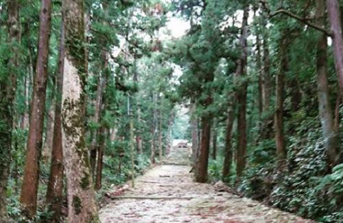 オオゲツヒメを祀ってある徳島県にある上一宮大粟神社