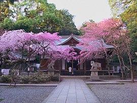 カタカムナの聖地は保久良神社