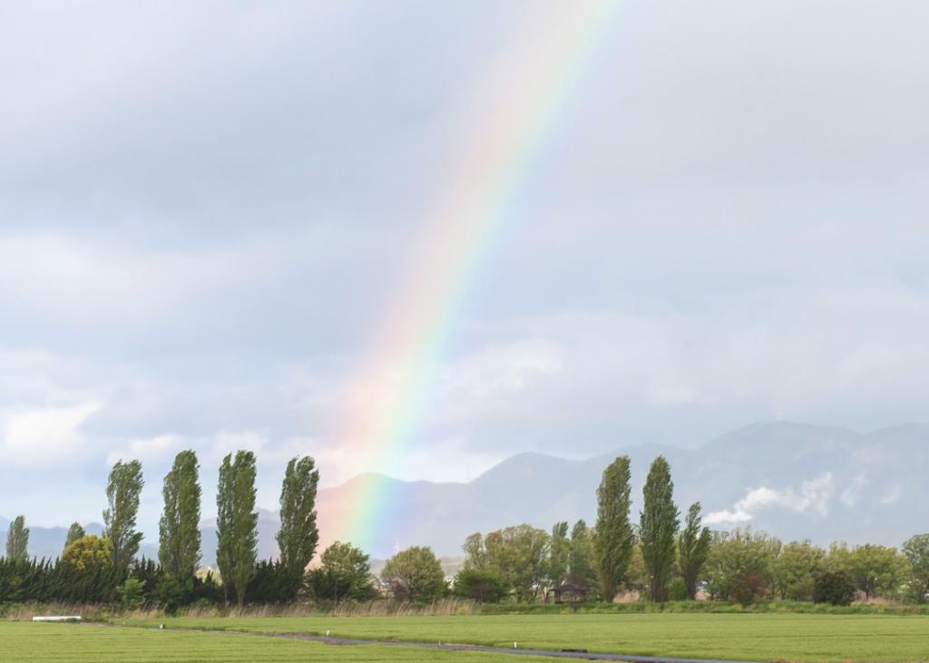 虹をよく見る