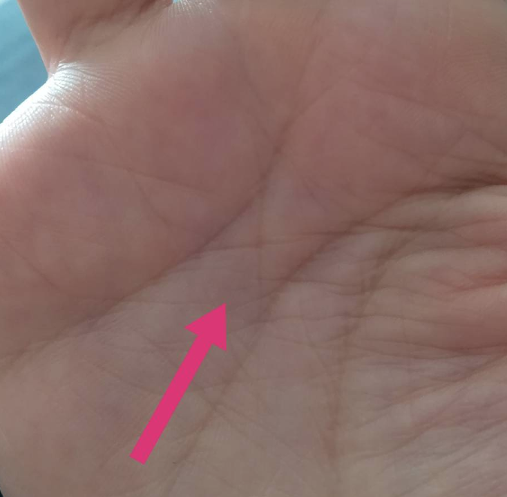 先祖に守られている人の手相 神秘十字線
