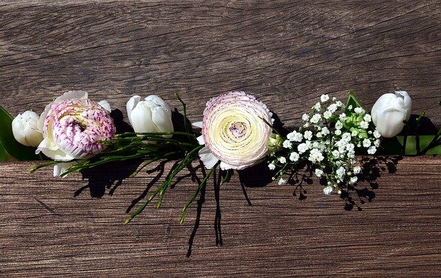 白い花が並んでいる画像