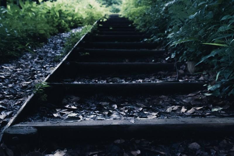 雫石・慰霊の森(しずくいし・いれのもり)はひやかしで訪れてはいけない心霊スポット