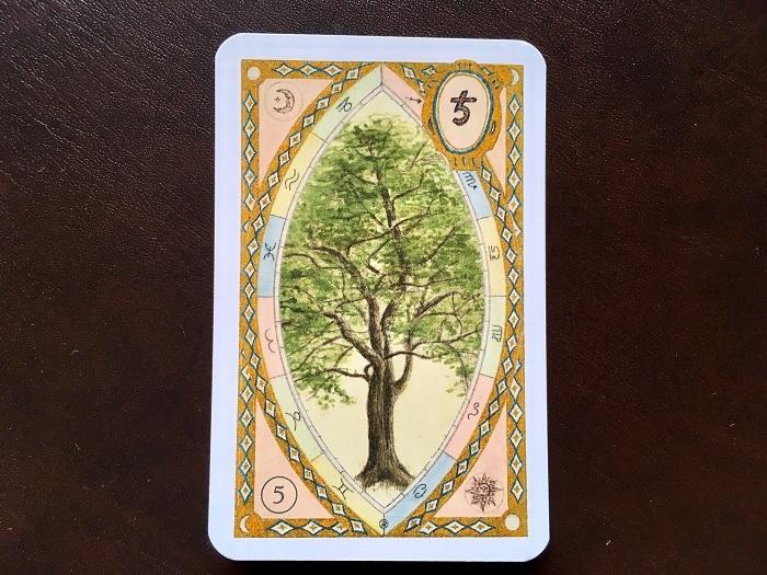ルノルマンカード・樹はどんな意味のカード?