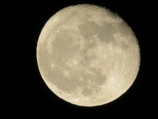 十六夜には月を見上げてみましょう