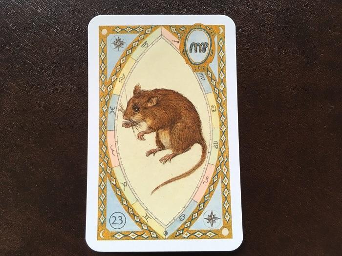 ルノルマンカード・ネズミはどんな意味のカード?