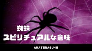 蜘蛛(クモ)のスピリチュアルな意味とは?朝と夜のメッセージの違いを解説