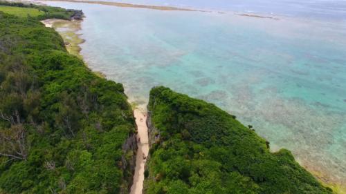 沖縄で発見した神様の秘境!呼ばれた人だけが行ける備瀬のワルミ