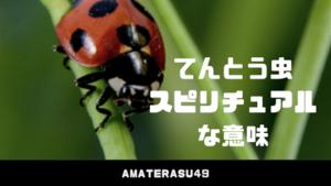 てんとう虫が持つスピリチュアルな意味について解説!てんとう虫はお天道様の虫で幸運のサイン?