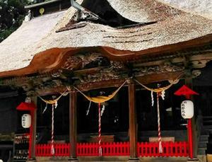 魂の再生と原点回帰に繋がる祈りの旅!熊野信仰とは?