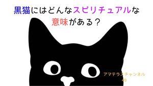 黒猫にはどんなスピリチュアルな意味がある?