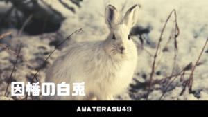 因幡の白兎とは?日本神話に登場する物語のあらすじと意味を解説