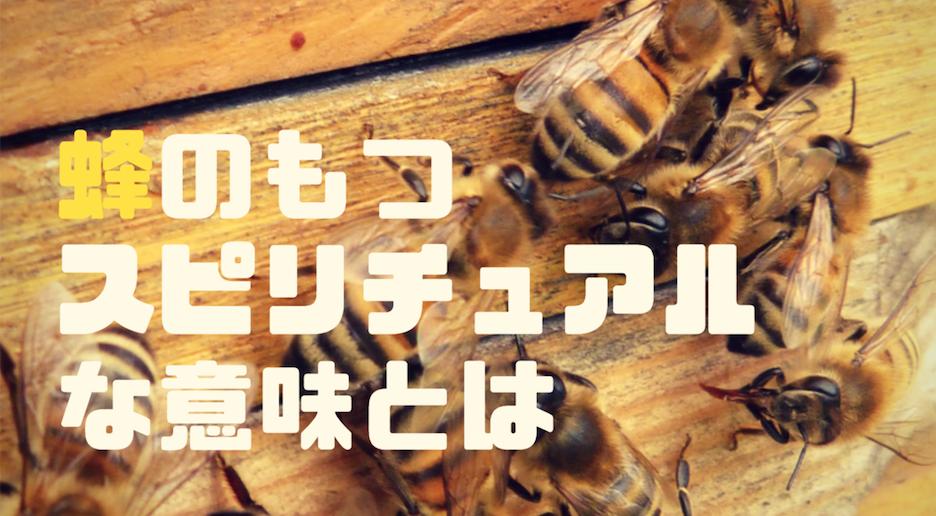 蜂のもつスピリチュアルな意味とは?ミツバチとスズメバチの意味について解説