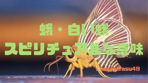 蛾のスピリチュアルな意味について解説!白い蛾は幸運の証?