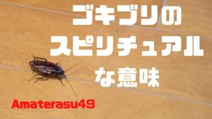ゴキブリは粘り強さを意味する虫?ゴキブリのスピリチュアルな意味を解説