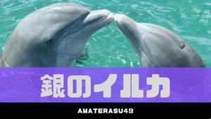 【2020年】銀のイルカの運勢は?五星三心占いでの5つの性格と相性・適職を解説!