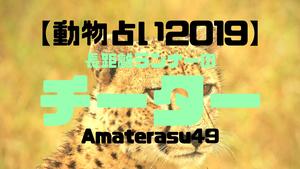 【動物占い2019】<1長距離ランナーのチーター>の性格・特徴・恋愛運・仕事運と他の動物との相性を解説!