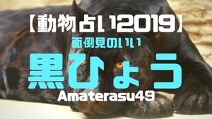 【動物占い2019】<5面倒見のいい黒ひょう>の性格・特徴・恋愛運・仕事運と他の動物との相性を解説!