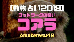 【動物占い2019】<4フットワークの軽いコアラ>の性格・特徴・恋愛運・仕事運と他の動物との相性を解説!