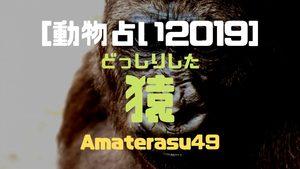 【動物占い2019】<15どっしりした猿>の性格・特徴・恋愛運・仕事運と他の動物との相性を解説!