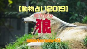 【動物占い2019】<25 穏やかな狼>の性格・特徴・恋愛運・仕事運と他の動物との相性を解説!