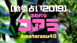【動物占い2019】<33   活動的なコアラ>の性格・特徴・恋愛運・仕事運と他の動物との相性を解説!