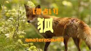 【夢占い】狐が出て来る夢を見るのは幸運の証?狐が出て来る夢の意味を状況