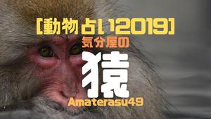 【動物占い2019】<34 気分屋の猿>の性格・特徴・恋愛運・仕事運と他の動物との相性を解説!
