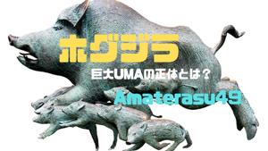 ホグジラとは?巨大UMAの正体はイノシシ?乙事主との関係は?その生態を動画つきで解説
