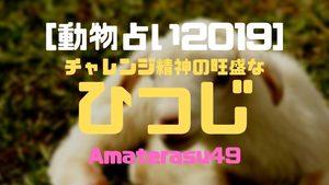 【動物占い2019】<29 チャレンジ精神の旺盛なひつじ>の性格・特徴・恋愛運・仕事運と他の動物との相性を解説!