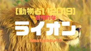 【動物占い2019】<57 感情的なライオン>の性格・特徴・恋愛運・仕事運と他の動物との相性を解説!