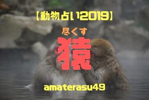 【動物占い2019】<40 尽くす猿>の性格・特徴・恋愛運・仕事運と他の動物との相性を解説!