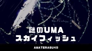 スカイフィッシュとは?空を高速で飛ぶUMAの正体と捕まえ方について!