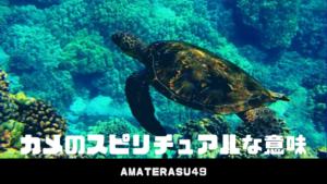 カメのスピリチュアルな意味・亀は縁起のいい幸運の象徴?ハワイでの亀の持つ意味についても解説