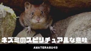 ネズミのスピリチュアルな意味とは?見たときのスピリチュアルメッセージ、祀る神社について